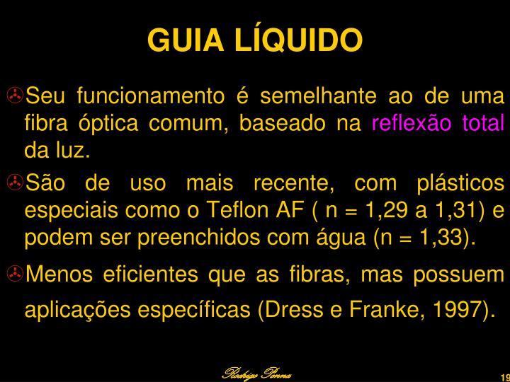 GUIA LÍQUIDO