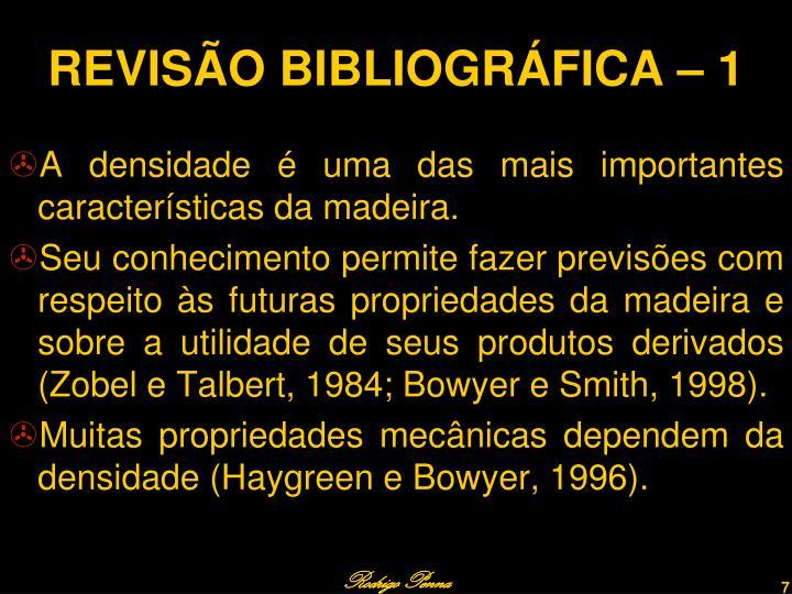 REVISÃO BIBLIOGRÁFICA – 1