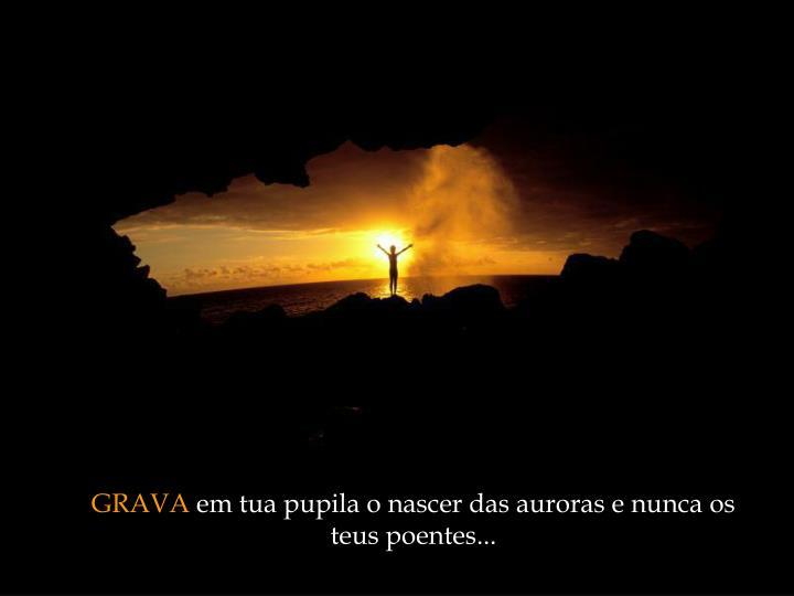 GRAVA