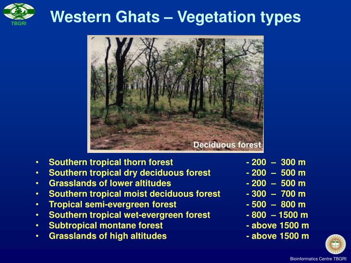 Southern tropical thorn forest - 200  –  300 m
