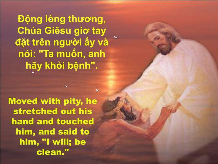 """Động lòng thương, Chúa Giêsu giơ tay đặt trên người ấy và nói: """"Ta muốn, anh hãy khỏi bệnh""""."""