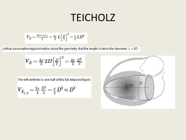 TEICHOLZ