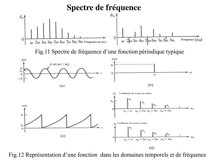 Spectre de fréquence