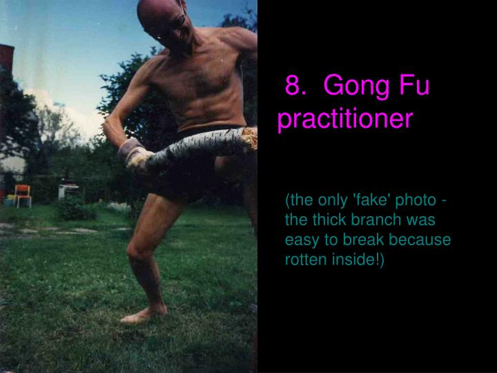 8.  Gong Fu practitioner