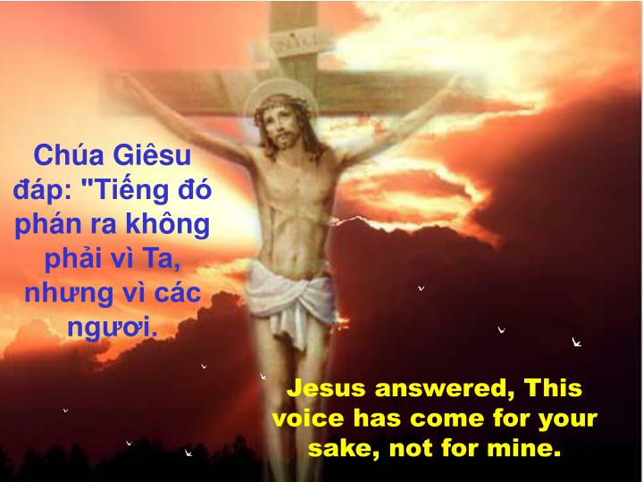 """Chúa Giêsu đáp: """"Tiếng đó phán ra không phải vì Ta, nhưng vì các ngươi."""
