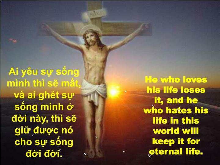 Ai yêu sự sống mình thì sẽ mất, và ai ghét sự sống mình ở đời này, thì sẽ giữ được nó cho sự sống đời đời.