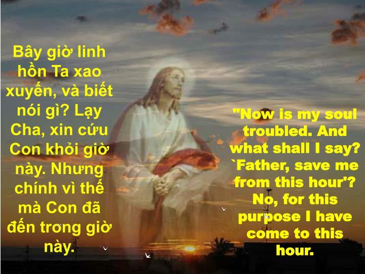 Bây giờ linh hồn Ta xao xuyến, và biết nói gì? Lạy Cha, xin cứu Con khỏi giờ này. Nhưng chính vì thế mà Con đã đến trong giờ này.