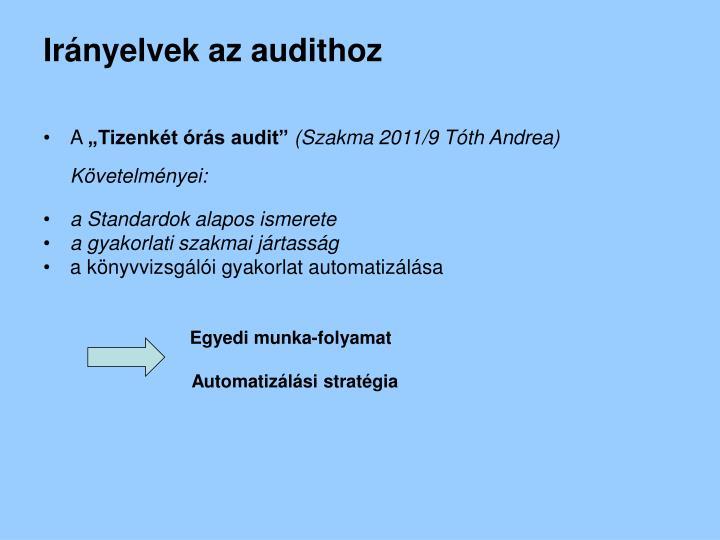 Irányelvek az audithoz