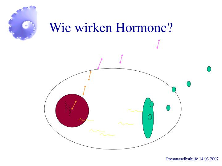 Wie wirken Hormone?
