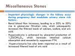 miscellaneous stones11