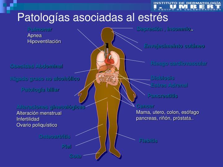 Patologías asociadas al estrés