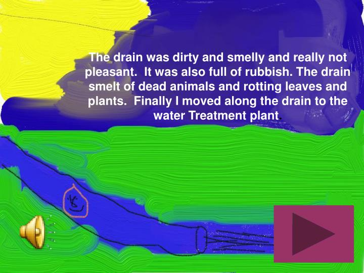The drain was dirty and smelly and really not pleasant.  It was also full of rubbish. The drain smelt of dead animals and rotting leaves and plants.