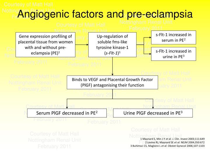 Angiogenic factors and pre-eclampsia