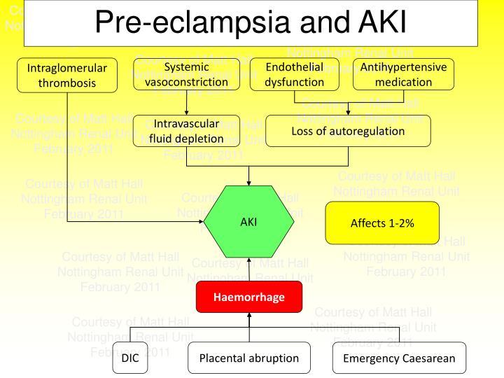 Pre-eclampsia and AKI