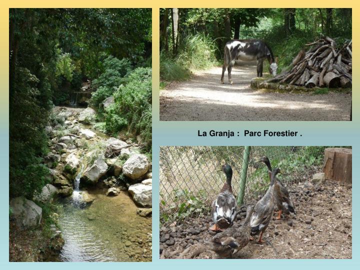 La Granja :  Parc Forestier .