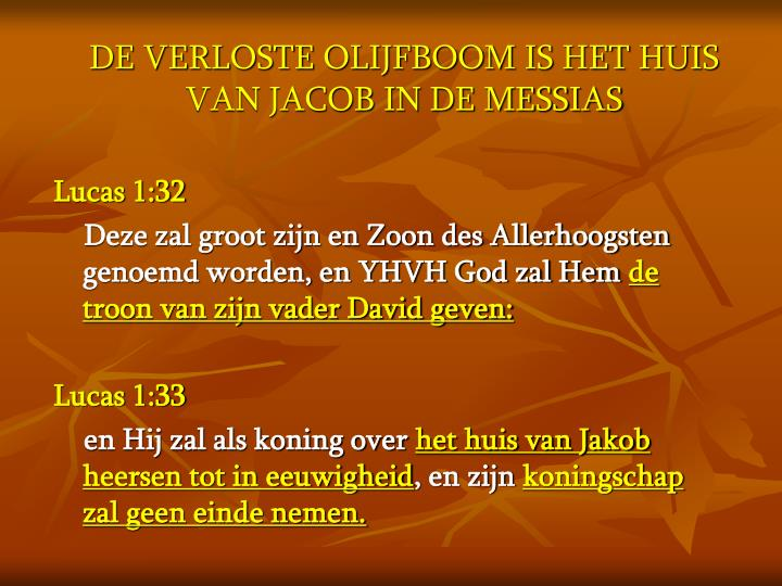 DE VERLOSTE OLIJFBOOM IS HET HUIS VAN JACOB IN DE MESSIAS