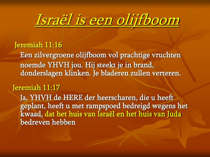 Israël is een olijfboom