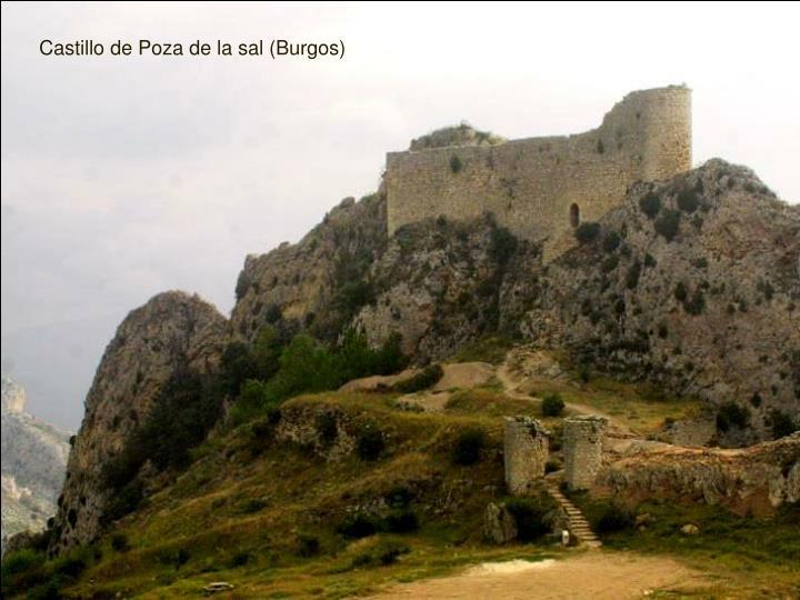 Castillo de Poza de la sal (Burgos)