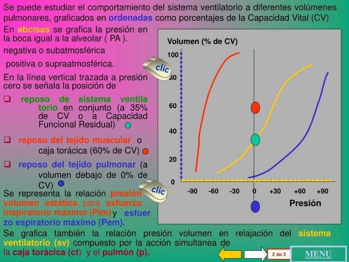 Se puede estudiar el comportamiento del sistema ventilatorio a diferentes volúmenes pulmonares, graficados en