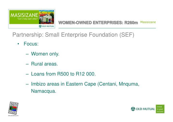 Partnership: Small Enterprise Foundation (SEF)