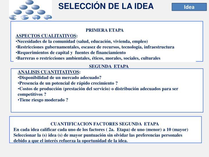 SELECCIÓN DE LA IDEA