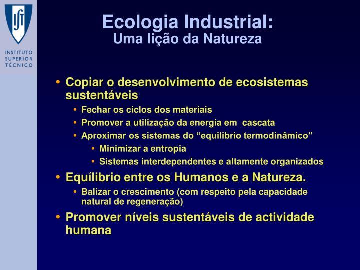 Copiar o desenvolvimento de ecosistemas sustentáveis