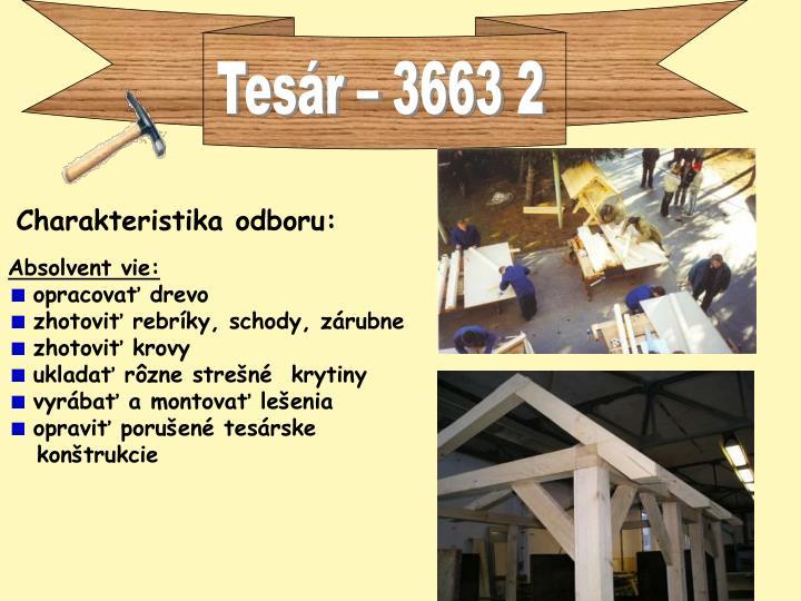 Tesár – 3663 2