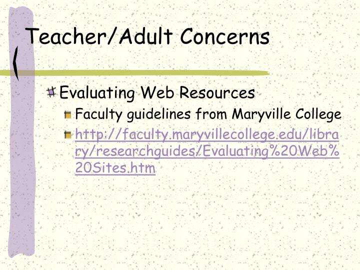 Teacher/Adult Concerns
