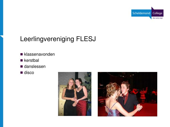 Leerlingvereniging FLESJ