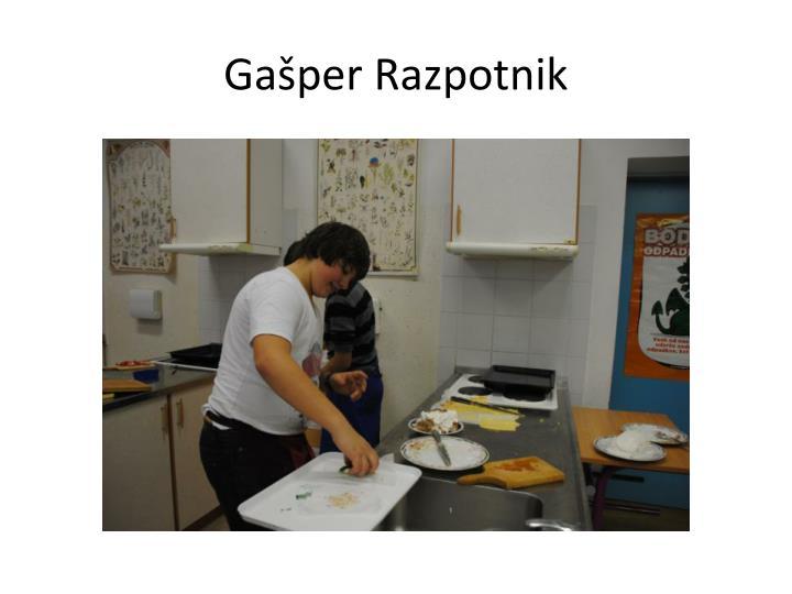 Gašper Razpotnik