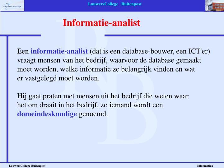 Informatie-analist