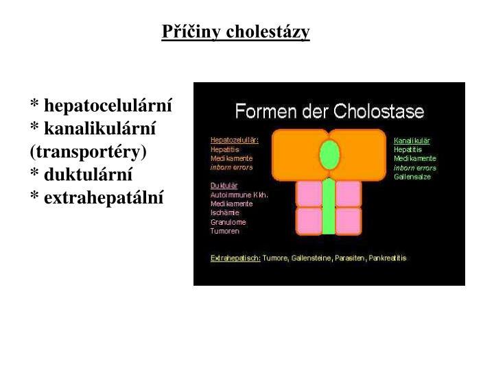 Příčiny cholestázy