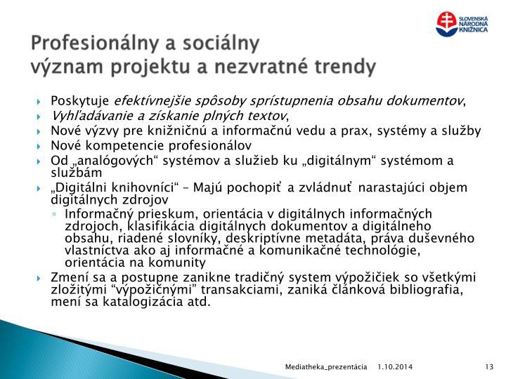 Profesionálny a sociálny