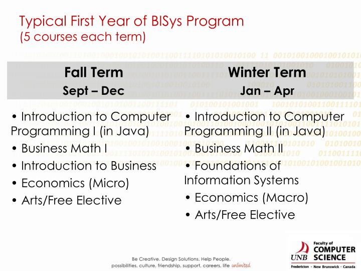 Typical First Year of BISys Program