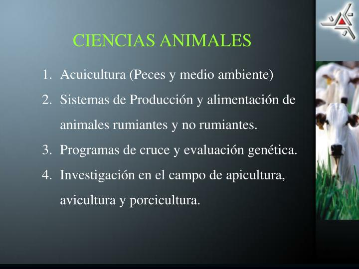 CIENCIAS ANIMALES
