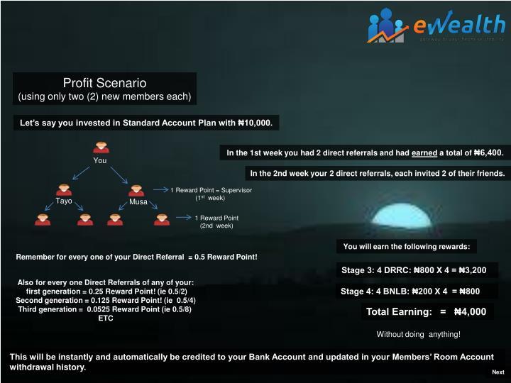 Profit Scenario