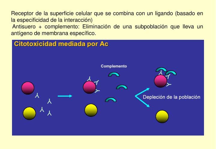 Receptor de la superficie celular que se combina con un ligando (basado en la especificidad de la interacción)
