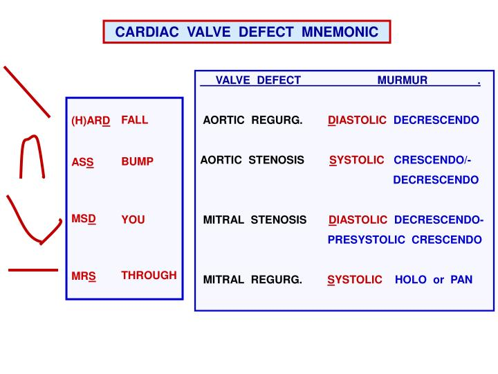 CARDIAC  VALVE  DEFECT  MNEMONIC