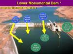 lower monumental dam