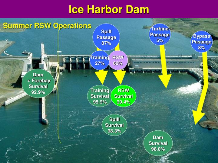 Ice Harbor Dam