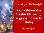 hallelujah hallelujah rajna il kewkba tieg u fil lvant u ejna nqimu l mulej hallelujah