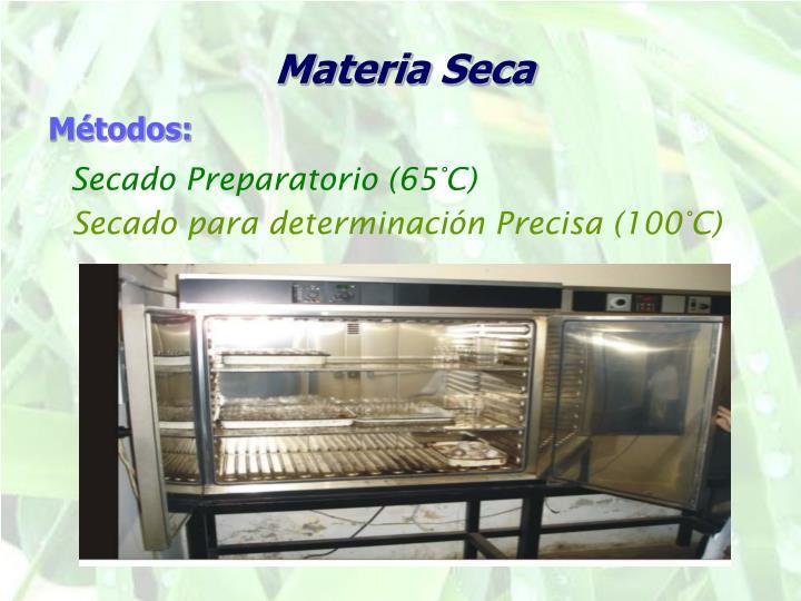 Materia Seca