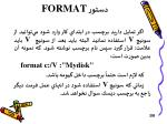 format5