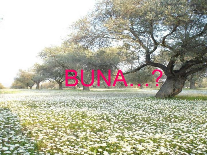 BUNA?