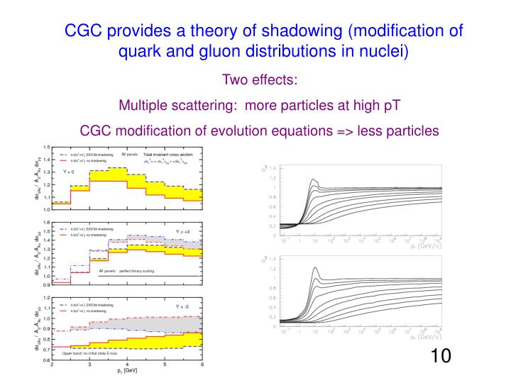 CGC provides a theory of shadowing (modification of quark and gluon distributions in nuclei)