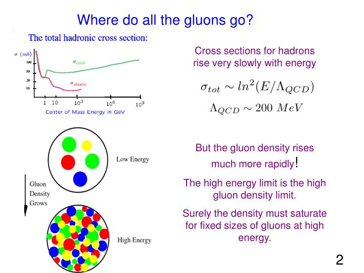 Where do all the gluons go?