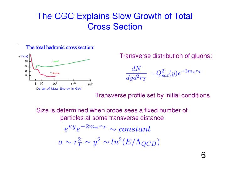 The CGC Explains Slow Growth of Total Cross Section