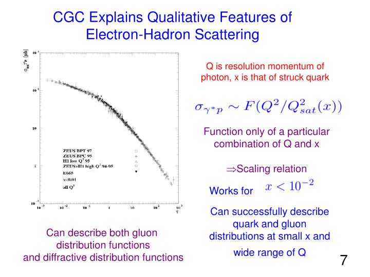 CGC Explains Qualitative Features of Electron-Hadron Scattering
