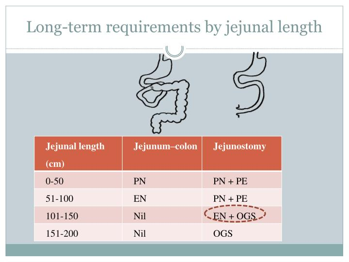Long-term requirements by jejunal length