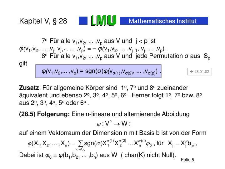 Kapitel V, § 28